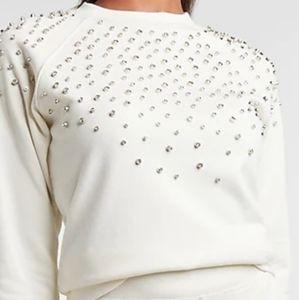 Express Embellished Crewneck Sweatshirt Swan